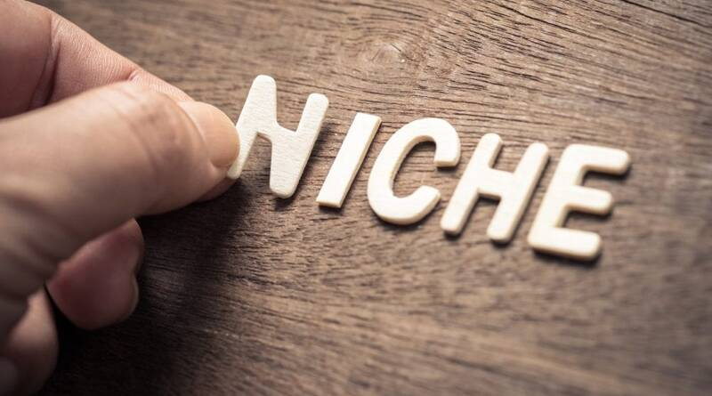 NICHE, closeup hand place a wood letter - How to Choose Your Niche?
