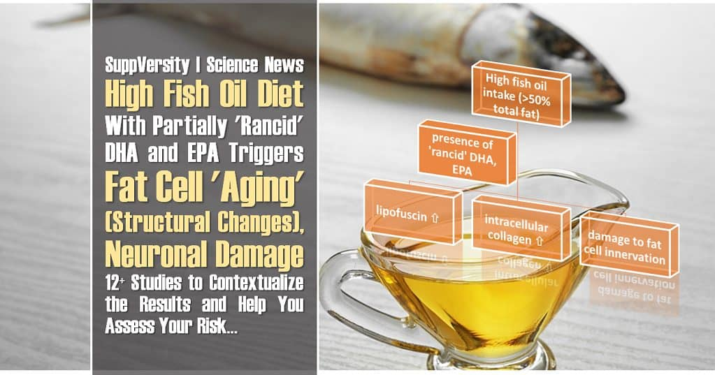 High Fish Oil Diet ➯ N3-Oxidation ➯ Fat Cell 'Aging', Plus Neuronal Damage | 12+ Studies to Contextualize the Results