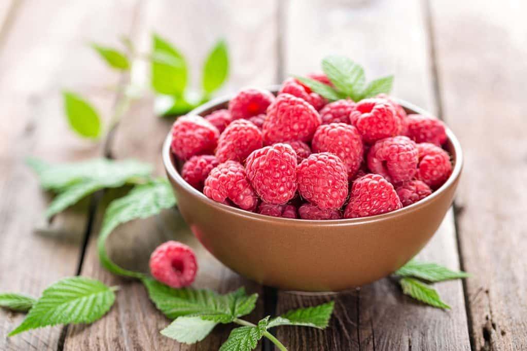 Ranking the best raspberry ketone supplements of 2020