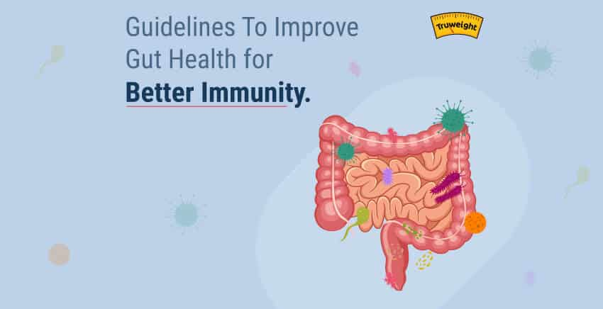 Know How Your Gut Health Is Related To Your Immunity